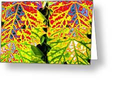Abstract Fusion 16 Greeting Card