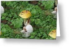 Abstract Mushrooms Greeting Card