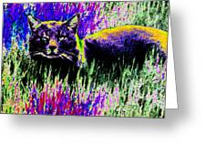 Abstract Of Tabby Greeting Card