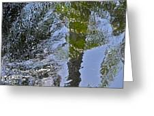 Abstract Palm Reflections Greeting Card