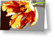 Abstract Parrot Tulip Greeting Card