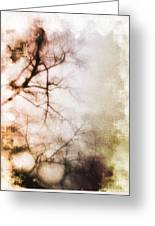 Abstract Trees Greeting Card