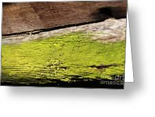 Abstract With Green Greeting Card