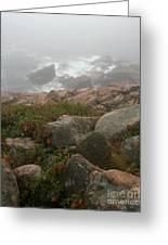 Acadia National Park Foggy Coast Greeting Card by Chris Hill