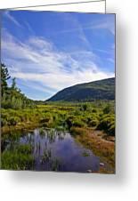 Acadian Marsh Greeting Card