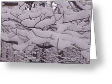 Accumulated Snow Flakes Greeting Card