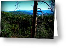 Across The Forested Mountains Greeting Card