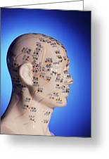 Acupuncture Chart On A Cast Of A Head And Neck Greeting Card