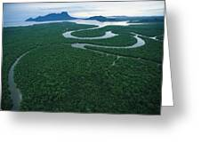 Aerial View Of The Salak River. Mount Greeting Card by Tim Laman
