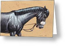 After The Race.  Greeting Card