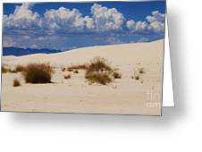 Afternoon At White Sands National Monument Greeting Card
