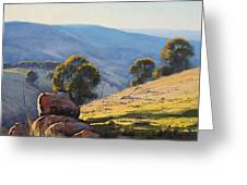 Afternoon Light Turon Hills Greeting Card by Graham Gercken