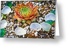 Agates And Cactus Greeting Card