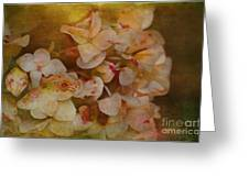Aged Hydrangeas With Texture Greeting Card