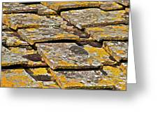 Aged Roof Tiles Of Tuscany Greeting Card