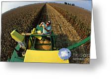 Agricultural Engineer Greeting Card