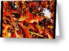 Ahhh Fall. Greeting Card