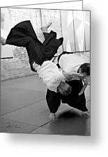 Aikido  Greeting Card
