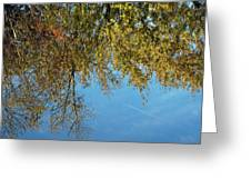 Airplane Reflections Greeting Card