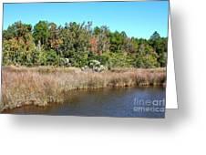Alabama Bayou In Autumn Greeting Card