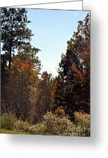 Alabama Mountainside October 2012 Greeting Card