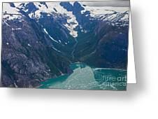Alaska Coastal Greeting Card by Mike Reid