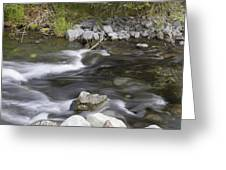Alaskan Brook Greeting Card