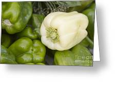 Albino Bullnose Pepper Greeting Card