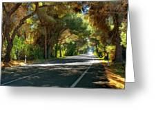 Albufera Road To El Palmar. Valencia. Spain Greeting Card