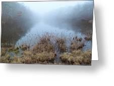 Alcotts Pond In Fog Greeting Card
