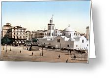 Algeria: Algiers, C1899 Greeting Card