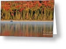 Algonquin Reflections Greeting Card by Chris Hill
