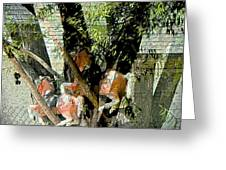 All My Horses Live In Trees Greeting Card