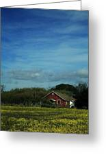 All That Yellow Greeting Card by Laurie Search