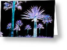 All The Palms Greeting Card