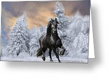 Allegro Coming Home Greeting Card