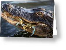 Alligator Catches Two Crabs Greeting Card