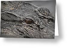 Alligator Eye Greeting Card