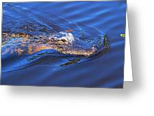 Alligator In Mississippi River Greeting Card
