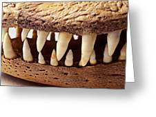 Alligator Skull Teeth Greeting Card