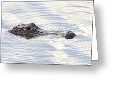 Alligator With Sky Reflections - A Closer View Greeting Card