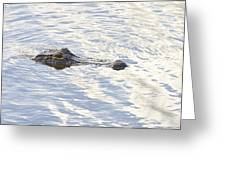 Alligator With Sky Reflections Greeting Card