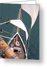 Aloft Greeting Card by David Barringhaus