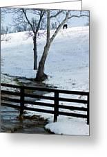 Alone On A Hill Greeting Card by Paul Roger Ballard