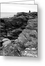 Alone Time Bw Greeting Card