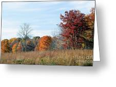 Alone With Autumn Greeting Card
