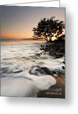 Alone With The Sea Greeting Card by Mike  Dawson