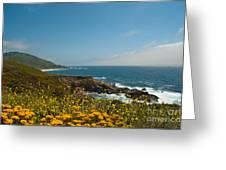 Along Big Sur Greeting Card