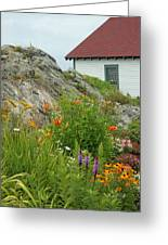 Along The Coast Of Maine Greeting Card