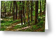 Along The Hiking Trail Greeting Card